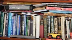 Foire aux livres et petites collections @ Place de l'église, Viriville